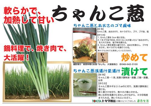 ちゃんこ葱の食べ方紹介ポップ