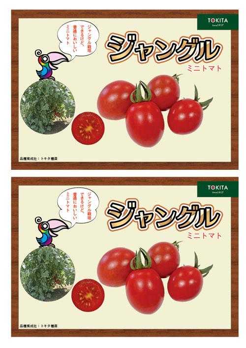 ジャングルトマト青果販売用ポップ