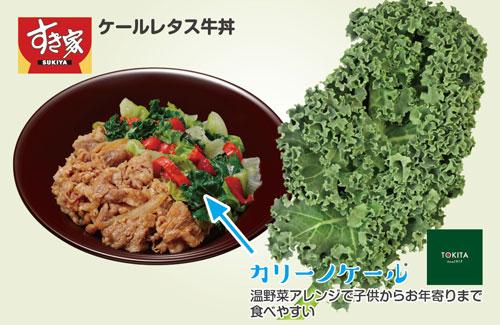 ケールレタス牛丼・カリーノケール温野菜仕立てで子供からお年寄りまで食べやすい
