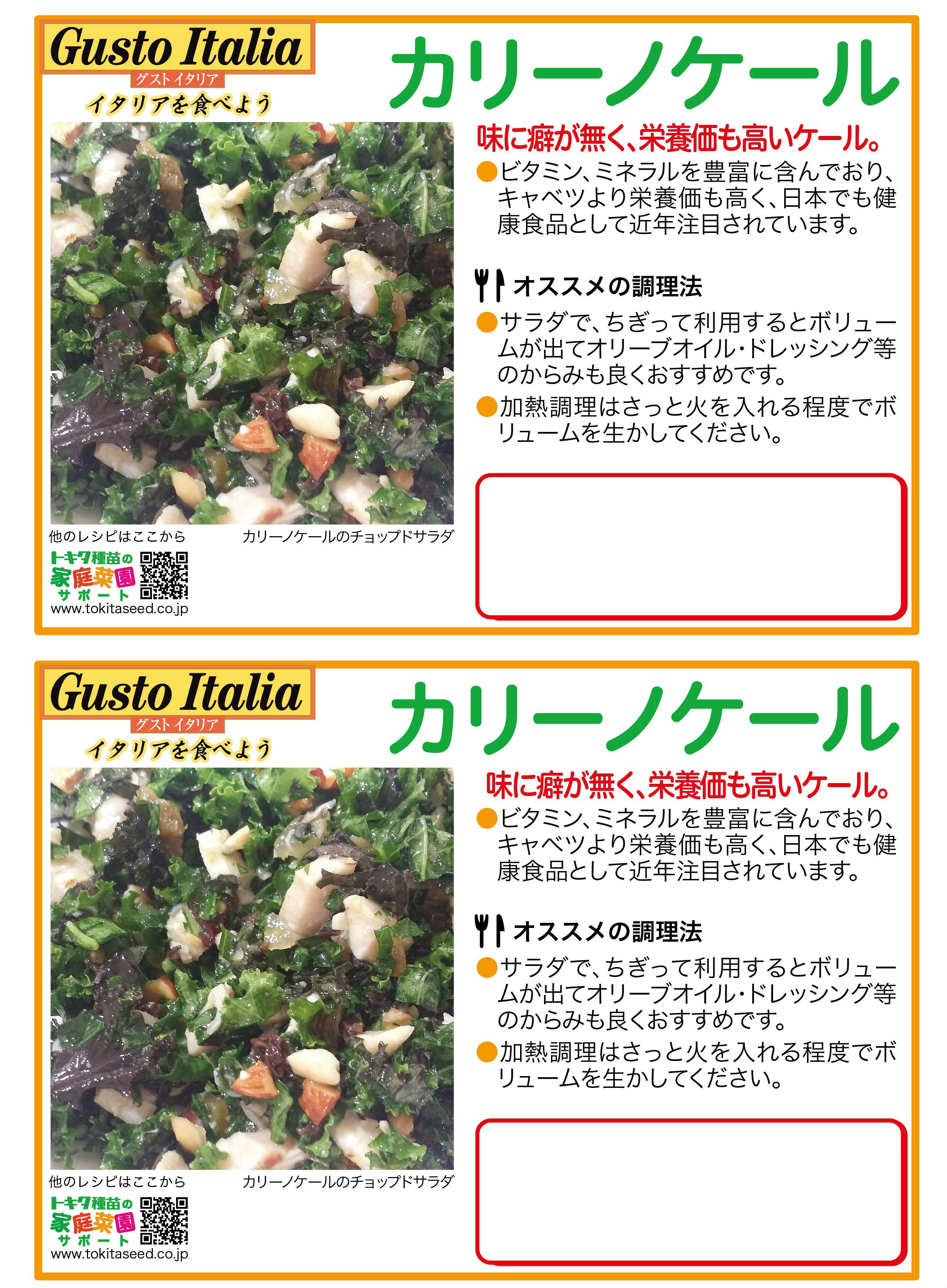 カリーノケール(青果販売用ポップ)A4