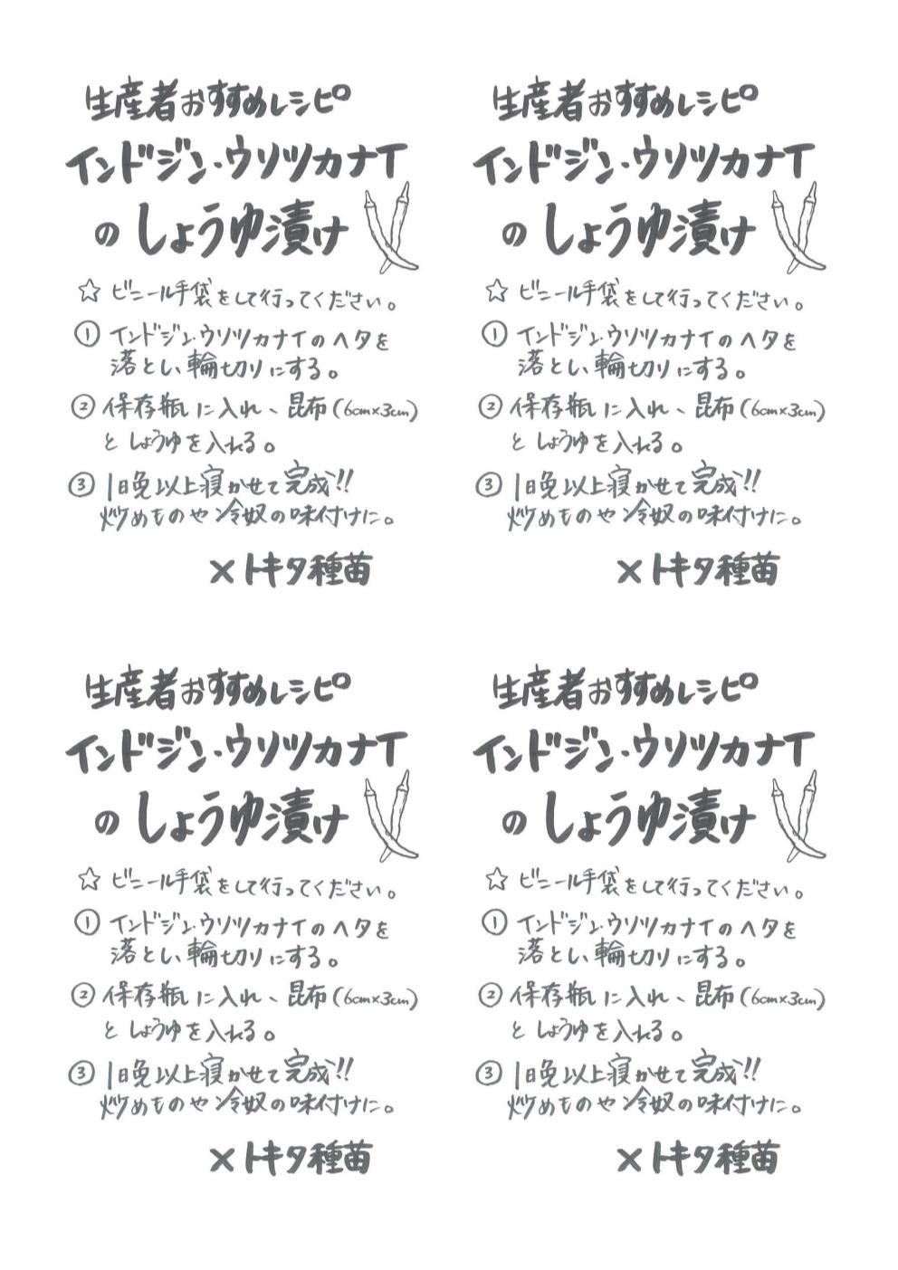 インドジンウソツカナイのしょうゆ漬け手書きレシピ