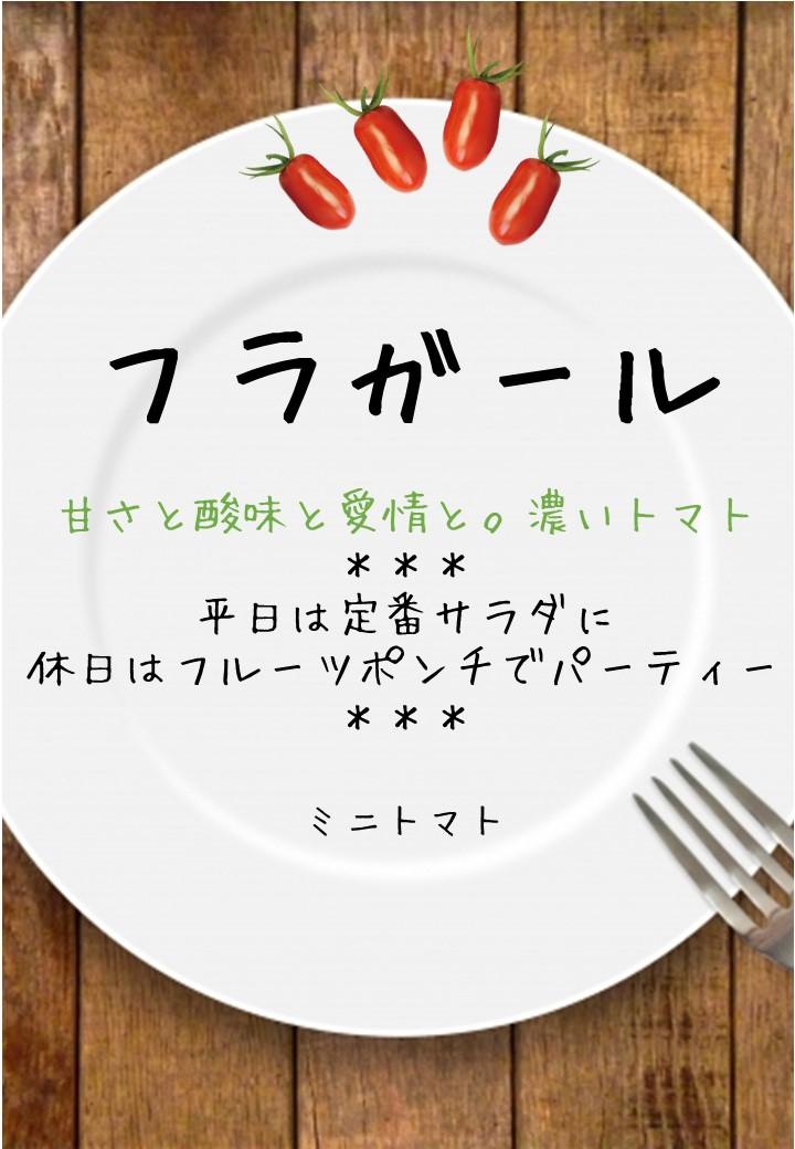 食卓風フラガール写真入りPOP