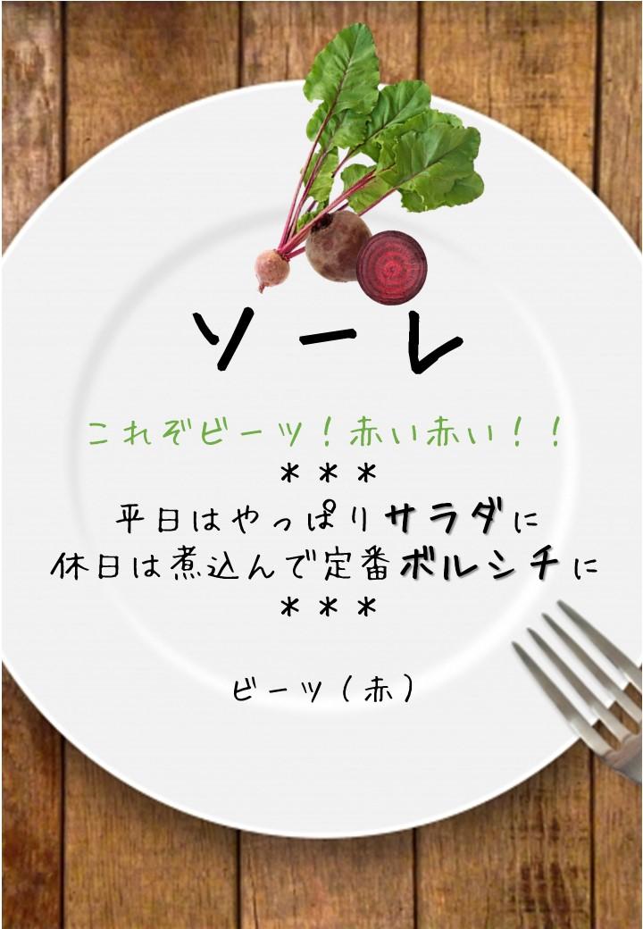 食卓風ソーレ写真入りPOP