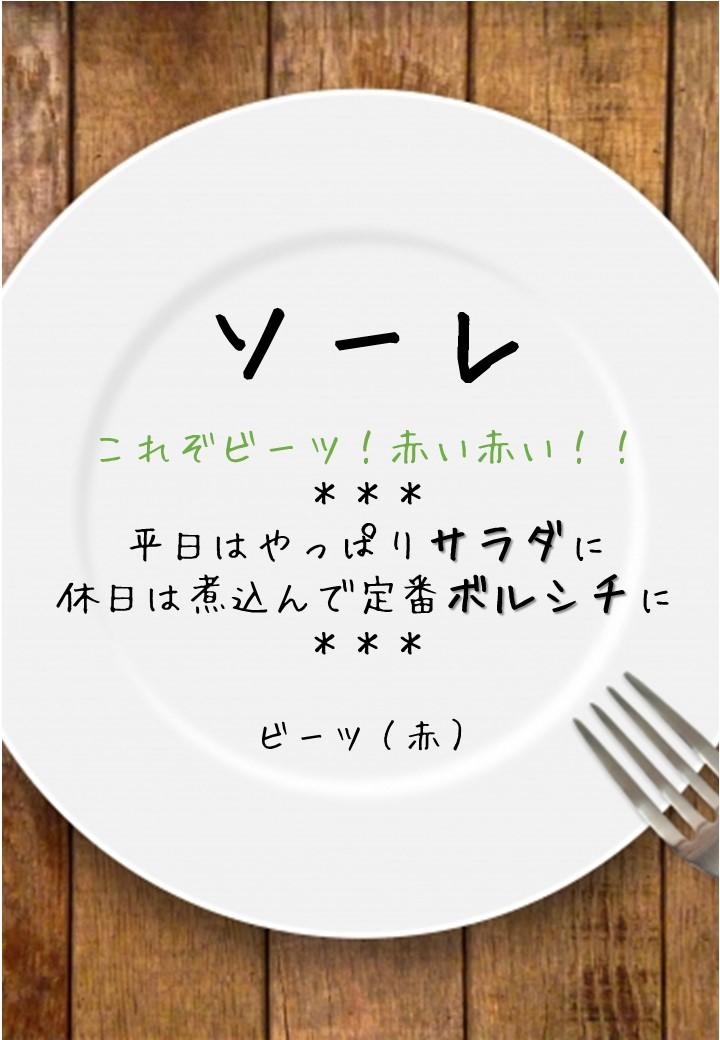 食卓風ソーレPOP