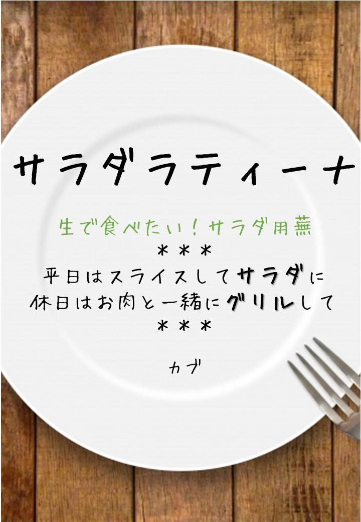 食卓風サラダラティーナPOP