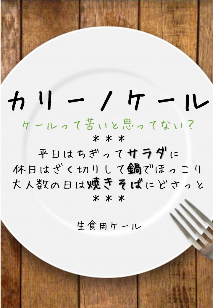 食卓風カリーノケールPOP