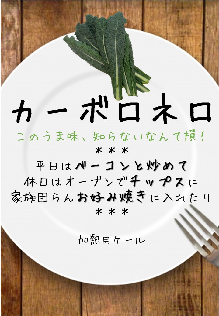 食卓風カーボロネロ写真入りPOP
